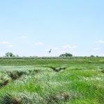 De 4 mooiste natuurplekken in de gemeente Hulst